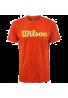 Camiseta Wilson SCRITP COTTON TEE green glow